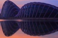 Alba di Singapore al nuovo giardino botanico Fotografia Stock