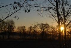 Alba di Sun il campo Immagini Stock