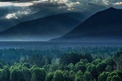 Alba drammatica nelle montagne con la foresta sempreverde spessa in priorità alta, montagne di Altai, il Kazakistan Fotografie Stock