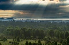 Alba drammatica nelle montagne con la foresta sempreverde spessa in priorità alta, montagne di Altai, il Kazakistan fotografia stock libera da diritti