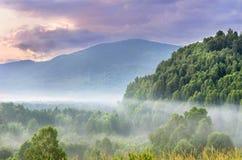 Alba drammatica nelle montagne con Misty Evergreen Forest spessa su una mattina di estate, Ivanovskiy Khrebet Ridge, montagne di  fotografia stock