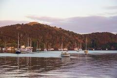 Alba e barche nel porto di Mangonui, Nuova Zelanda Fotografia Stock Libera da Diritti