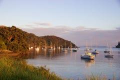 Alba e barche nel porto di Mangonui, Nuova Zelanda Immagini Stock Libere da Diritti