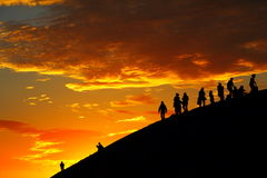Alba - ipomea - nuovo inizio fotografie stock libere da diritti