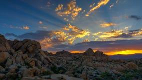 Alba a Joshua Tree National Park Fotografia Stock Libera da Diritti