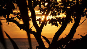 Alba a Kalama - Kailua, Hawai'i Immagine Stock