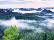 Alba maravillosa Los picos de colinas se están pegando hacia fuera de la niebla Fotos de archivo