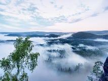 Alba maravillosa Los picos de colinas se están pegando hacia fuera de la niebla Fotografía de archivo