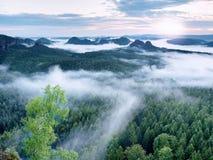 Alba maravillosa Los picos de colinas se están pegando hacia fuera de la niebla Imagen de archivo libre de regalías