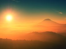Alba maravillosa sobre el valle por completo de los picos coloridos de la niebla de altos árboles Foto de archivo libre de regalías