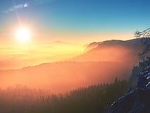 Alba maravillosa sobre el valle por completo de los picos coloridos de la niebla de altos árboles Foto de archivo