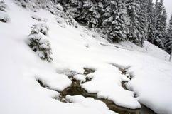 Alba in montagne carpatiche Immagini Stock Libere da Diritti