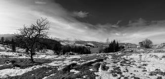Alba in montagne carpatiche Fotografia Stock