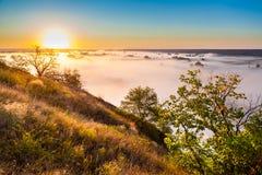 Alba nebbiosa dalla collina sopra la valle e la foresta Fotografie Stock Libere da Diritti