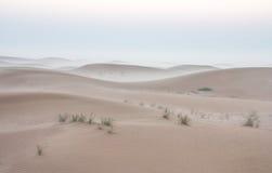 Alba nebbiosa di mattina di inverno nel deserto La Doubai, UAE Fotografia Stock