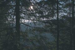 alba nebbiosa in montagne slovacche di Tatra con i vicoli leggeri in nebbia durante l'autunno scuro nelle tracce di escursione -  immagini stock
