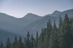 alba nebbiosa in montagne slovacche di Tatra con i vicoli leggeri in nebbia durante l'autunno scuro nelle tracce di escursione -  fotografia stock libera da diritti