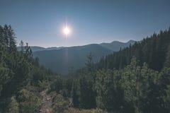 alba nebbiosa in montagne slovacche di Tatra con i vicoli leggeri in nebbia durante l'autunno scuro nelle tracce di escursione -  fotografie stock