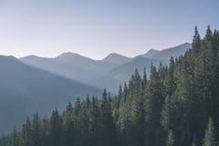 alba nebbiosa in montagne slovacche di Tatra con i vicoli leggeri in nebbia durante l'autunno scuro nelle tracce di escursione -  immagine stock