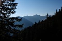 alba nebbiosa in montagne slovacche di Tatra con i vicoli leggeri nella f fotografie stock libere da diritti