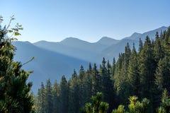 alba nebbiosa in montagne slovacche di Tatra con i vicoli leggeri nella f fotografia stock