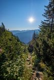 alba nebbiosa in montagne slovacche di Tatra con i vicoli leggeri nella f immagine stock libera da diritti