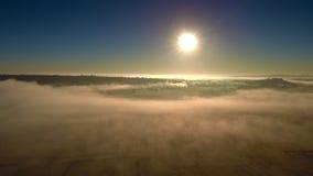 Alba nebbiosa sopra il campo archivi video