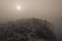 Alba nebbiosa sopra un lago Immagine Stock