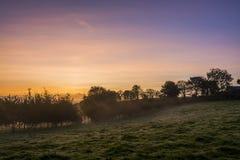 Alba nei campi dell'azienda agricola con gli alberi ed il bello cielo rosa, Cornovaglia, Regno Unito Fotografia Stock Libera da Diritti