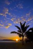 Alba nei Caraibi Immagine Stock Libera da Diritti