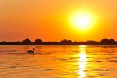 Alba nel delta del Danubio Fotografia Stock