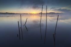 Alba nel lago immagini stock