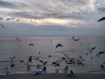 Alba nel Mar Nero Fotografia Stock Libera da Diritti