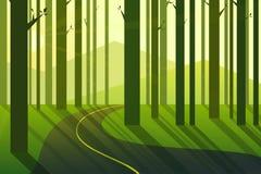 Alba nel paesaggio di mattina della foresta Immagine Stock