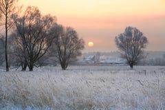 Alba nell'inverno Immagini Stock