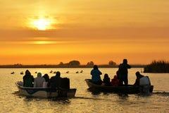 Alba nella prenotazione della natura del delta di Danubio, Romania Immagine Stock