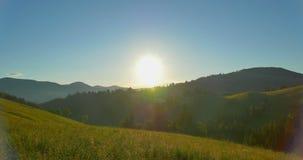 Alba o tramonto nelle montagne Foresta nelle montagne Bei pini di panorama sui precedenti del livello archivi video