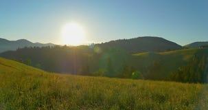 Alba o tramonto nelle montagne La foresta ed il legno recintano le montagne Bei pini di panorama sul archivi video