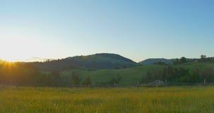 Alba o tramonto nelle montagne La foresta ed il legno recintano le montagne Bei pini di panorama sul stock footage