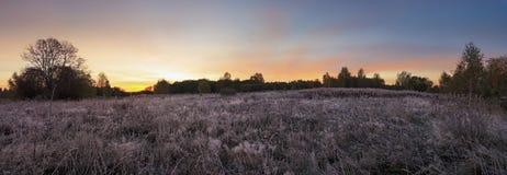Alba panoramica della foto in autunno tardo Immagini Stock