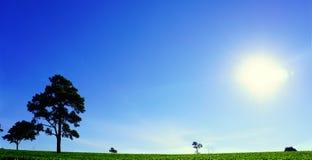 Alba in portone di Sun Immagini Stock Libere da Diritti