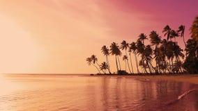 Alba roja de la isla de las palmeras de la isla Puesta del sol amarilla del sol sobre el mar almacen de metraje de vídeo