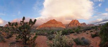 Alba rossa del deserto di rocce fotografie stock