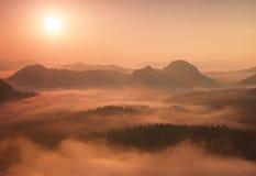 Alba rossa meravigliosa Alba nebbiosa in belle colline I picchi delle colline stanno attaccando fuori da fondo nebbioso, la nebbi fotografie stock