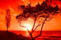 Alba rossa sulla spiaggia Fotografie Stock
