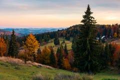 Alba rossastra in montagne Immagine Stock