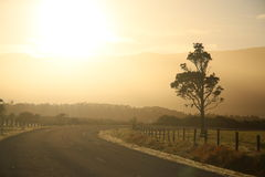 Alba rurale Fotografia Stock