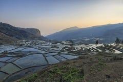 Alba sopra i terrazzi del riso di YuanYang nel Yunnan, Cina, uno di ultimi siti del patrimonio mondiale dell'Unesco fotografie stock libere da diritti