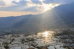 Alba sopra i terrazzi del riso di YuanYang nel Yunnan, Cina, uno di ultimi siti del patrimonio mondiale dell'Unesco immagine stock libera da diritti