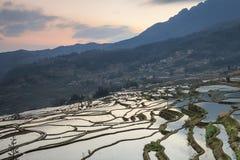 Alba sopra i terrazzi del riso di YuanYang nel Yunnan, Cina, uno di ultimi siti del patrimonio mondiale dell'Unesco immagini stock libere da diritti